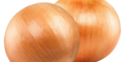 SELL FRESH VEGETABLES FRESH ONION, PRICE - INTERNATIONAL AGRICULTURAL EXCHANGE, Agro-Market24