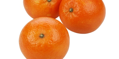 SELL FRESH FRUITS FRESH ORANGES, PRICE - AGRICULTURAL EXCHANGE, Agro-Market24