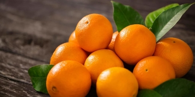 SELL DRIED FRUITS FRESH ORANGES, PRICE - INTERNATIONAL AGRICULTURAL EXCHANGE, Agro-Market24
