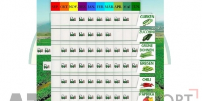 SELL FRESH FRUITS FRESH MELONS, PRICE - AGRICULTURAL ADVERTISEMENTS, Agro-Market24