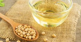 SELL FROZEN OIL PLANTS OIL PLANTS SOYBEAN , PRICE - AGRICULTURAL ADVERTISEMENTS, Agro-Market24