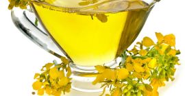 SELL FRESH OIL PLANTS OIL PLANTS RAPE, PRICE - INTERNATIONAL AGRICULTURAL EXCHANGE, Agro-Market24