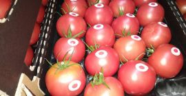 SELL FRESH VEGETABLES FRESH TOMATOES RASPBERRY, PRICE - CENY ROLNICZE, Agro-Market24