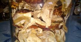 SELL FROZEN MUSHROOMS FRESH FOREST MUSHROOMS  BOLETUS, PRICE - INTERNATIONAL AGRICULTURAL EXCHANGE, Agro-Market24