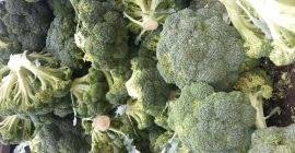 SELL FRESH VEGETABLES FRESH BROCCOLI, PRICE - INTERNATIONAL AGRICULTURAL EXCHANGE, Agro-Market24