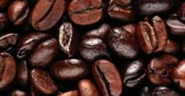 The Dry Coffee Beans, provided by us, are acclaimed for their taste and flavor. Positioned with leading names, we are an emerging name operating from Karnataka(India). In order to suit varied requirements of the clients, we have developed a secure payment procedure that have assorted offline and online options. wickr...meshi1 .Shelf Life : 6 Months .Type : Dried .Cultivation Type : Common .Purity : 100% .Use : Beverage, Coffee .Origin : India.