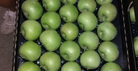 SELL FRESH FRUITS FRESH APPLES GRANNY SMITH, PRICE - INTERNATIONAL AGRICULTURAL EXCHANGE, Agro-Market24