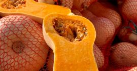 SELL FRESH VEGETABLES FRESH PUMPKIN, PRICE - INTERNATIONAL AGRICULTURAL EXCHANGE, Agro-Market24