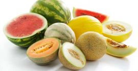SELL FROZEN FRUITS FRESH MELONS, PRICE - AGRICULTURAL ADVERTISEMENTS, Agro-Market24