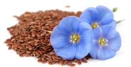SELL FRESH OIL PLANTS OIL PLANTS FLAX, PRICE - AGRICULTURAL EXCHANGE, Agro-Market24
