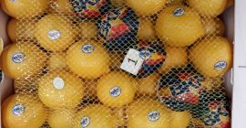 SELL FRESH FRUITS FRESH LEMONS, PRICE - AGRICULTURAL EXCHANGE, Agro-Market24