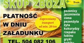 BUY DRIED CEREALS  CEREALS  OTHER, PRICE - CENY ROLNICZE, Agro-Market24