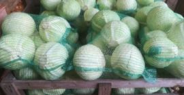 SELL DRIED VEGETABLES FRESH CABBAGE WHITE, PRICE - INTERNATIONAL AGRICULTURAL EXCHANGE, Agro-Market24