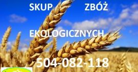 BUY FRESH CEREALS  CEREALS  OTHER, PRICE - AGRICULTURAL ADVERTISEMENTS, Agro-Market24