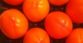 Spanish producer sells persimmons in Poland, Ukraine, Russia, the Czech Republic ...
