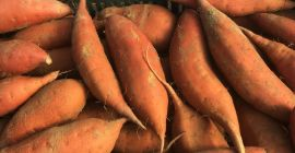 SELL FRESH POTATOES FRESH SWEET POTATO, PRICE - INTERNATIONAL AGRICULTURAL EXCHANGE, Agro-Market24