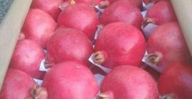 SELL DRIED FRUITS FRESH POMEGRANATE, PRICE - INTERNATIONAL AGRICULTURAL EXCHANGE, Agro-Market24