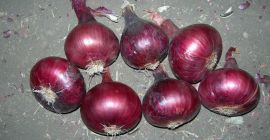Now we offer fresh :    (  Red  Onion   )  for season 2021-2022 we ready to prepare any quantities.  