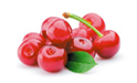 SELL FRESH FRUITS FRESH CHERRIES , PRICE - AGRICULTURAL EXCHANGE, Agro-Market24