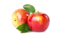 SELL FRESH FRUITS FRESH APPLES GALA SCHNIGA, PRICE - AGRICULTURAL EXCHANGE, Agro-Market24