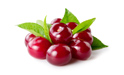 SELL INDUSTRIAL FRUITS FRESH SOUR CHERRIES, PRICE - INTERNATIONAL AGRICULTURAL EXCHANGE, Agro-Market24