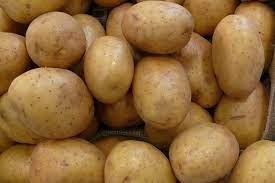 SELL INDUSTRIAL POTATOES FRESH POTATOES, PRICE - CENY ROLNICZE, Agro-Market24
